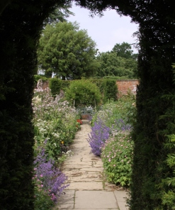 Tall hedges divide the garden and frame the views