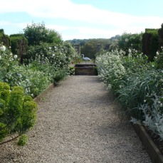 Edge beds next to gravel paths with sturdy timber