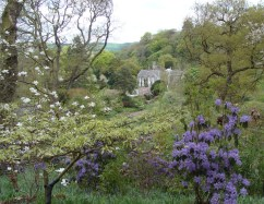 View of Gresgarth Hall from the Rhododendron Wood