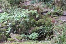 Natural Planting