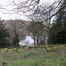 View of Rydal Water