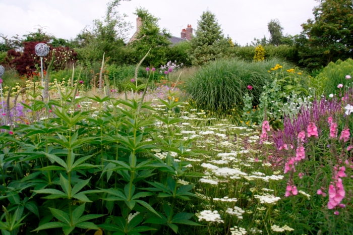 Bluebell Cottage Garden