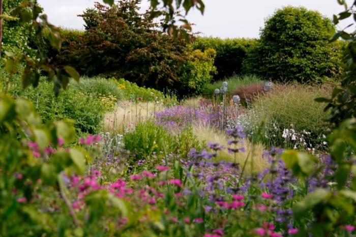 Bluebell Cottage Perennials & Grasses